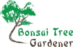 #1 Guide To Bonsai Trees | Bonsai Tree Gardener