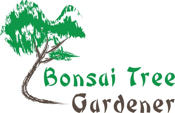Bonsai Tree Gardener