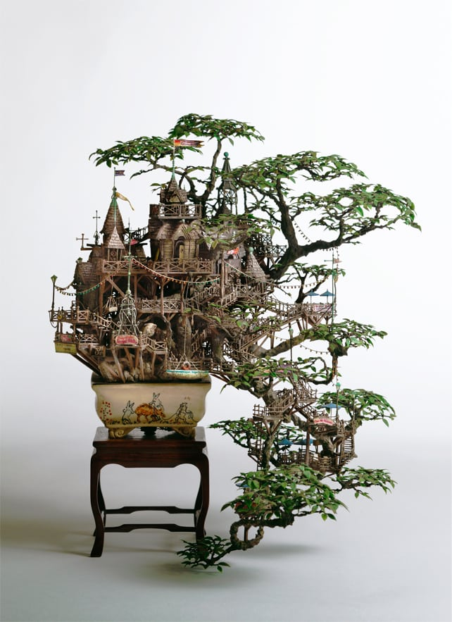 bonsai tree guide online shop bonsai tree gardener. Black Bedroom Furniture Sets. Home Design Ideas