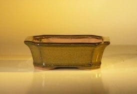 Tan Ceramic Bonsai Pot - Rectangle 6.0 x 4.75 x 2.0