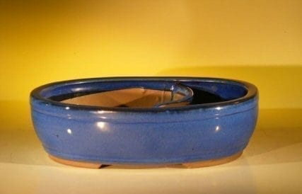 Blue Ceramic Bonsai Pot - Oval Land/Water Divider 11.25 x 9.5 x 3.0