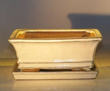 Beige Ceramic Bonsai Pot - Rectangle Professional Series with Attached Humidity/Drip tray 8.5 x 6.5 x 3.5