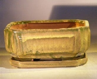 Green Ceramic Bonsai Pot - Rectangle Professional Series with Attached Humidity/Drip tray 8.5 x 6.5 x 3.5