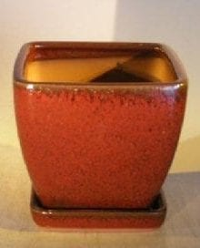 Parisian Red Ceramic Bonsai Pot Square With Attached Tray 6 x 6 x 6