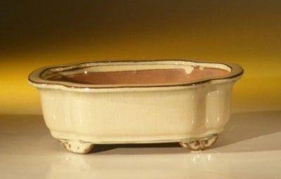 Beige Ceramic Bonsai Pot - Oval 7.0 x 5.5 x 2.375