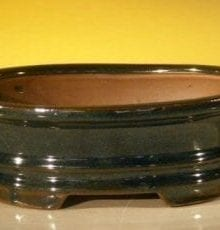 Dark Green Ceramic Bonsai Pot - Oval 8.0 x 6.5 x 3.0