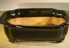 Black Ceramic Bonsai Pot - Rectangle 12.5 x 10.0 x 4.0