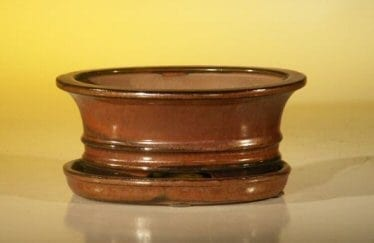 Aztec Orange Ceramic Bonsai Pot - Oval Professional Series with Attached Humidity/Drip tray 6.37 x 4.75 x 2.625