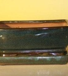 Green Ceramic Bonsai Pot With Attached Humidity/Drip tray - Professional Series Rectangle 6.37 x 4.75 x 2.625