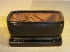 Black Ceramic Bonsai Pot- Rectangle Professional Series with Attached Humidity/Drip Tray 6.37 x 4.75 x 2.625