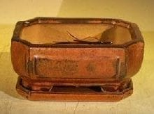 Aztec Orange Ceramic Bonsai Pot - Rectangle Professional Series with attached Humidity/Drip tray 6.37 x 4.75 x 2.625