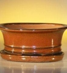 Aztec Orange Ceramic Bonsai Pot - Oval Professional Series with Attached Humidity/Drip tray 8.5 x 6.5 x 3.5