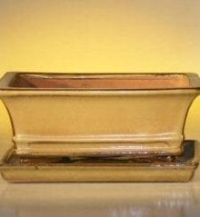 Mustard Color Ceramic Bonsai Pot - Rectangle Professional Series with Attached Humidity/Drip tray 8.5 x 6.5 x 3.5
