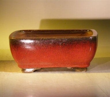 Parisian Red Ceramic Bonsai Pot - Rectangle 8.0 x 6.25 x 2.5
