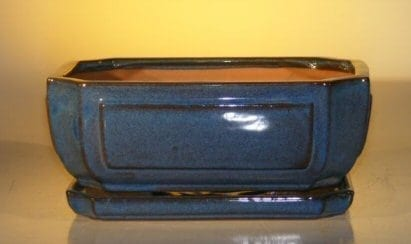Blue Ceramic Bonsai Pot - Rectangle Attached Humidity/Drip tray 10.75 x 8.5 x 4.125