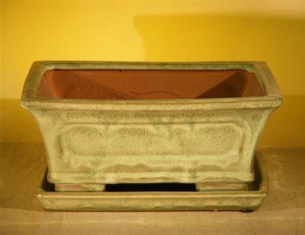 Melon Green Ceramic Bonsai Pot 10.75 x 8.5 x 4.125