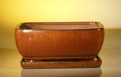 Aztec Orange Ceramic Bonsai Pot - Rectangle Attached Humidity/Drip tray 10.5 x 8.0 x 4.5