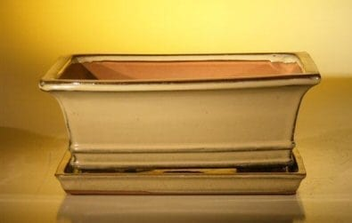 Ceramic Bonsai Pot With Attached Humidity/Drip tray - Professional Series Rectangle 10.75 x 8.5 x 4.125