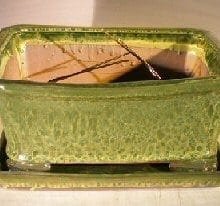 Woodlawn Green Ceramic Bonsai Pot - Rectangle Professional Series with Attached Humidity/Drip Tray 10.75 x 8.5 x 4.125