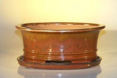 Aztec Orange Ceramic Bonsai Pot - Oval Professional Series with Attached Humidity/Drip tray 10.75 x 8.5 x 4.125
