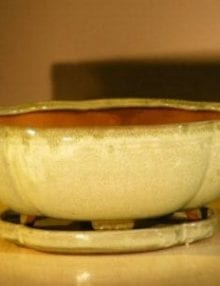 Green Apple Color Ceramic Bonsai Pot - Oval Professional Series with Attached Humidity/Drip tray 10.75 x 8.5 x 4.0