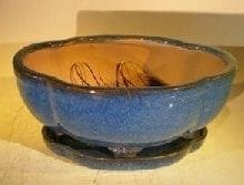 Blue Ceramic Bonsai Pot #2 - Oval Lotus Shaped Professional Series 10.5 x 9.0 x 5.0