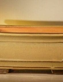 Mustard Color Ceramic Bonsai Pot - Rectangle Professional Series 12.0 x 9.5 x 4.75