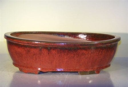 Parisian Red Ceramic Bonsai Pot - Oval 14.0 x 11.0 x 4.0