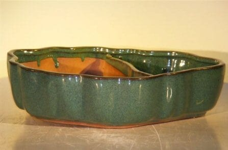 Dark Green Ceramic Bonsai Pot - Oval Land/Water with Scalloped Edges 12 x 9.5 x 3