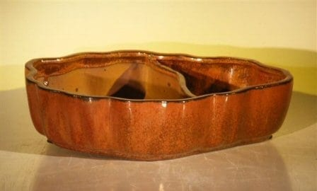Ceramic Bonsai Pot - Land/Water with Scalloped Edges 12.0 x 9.5 x 3.0