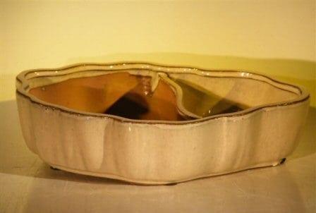 Biege Ceramic Bonsai Pot - Oval Land/Water with Scalloped Edges 9.5 x 7.5 x 2.25