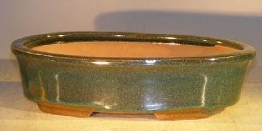 Dark Green Ceramic Bonsai Pot - Oval 9.25 x 6.25 x 2.5