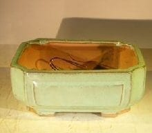 Green Ceramic Bonsai Pot #2 - Rectangle Professional Series 8.25 x 6.25 x 4.0