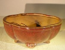 Parisian Red Ceramic Bonsai Pot - Oval Lotus Shaped Professional Series 8.25 x 7.0 x 4.0