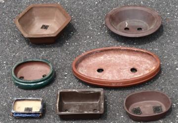 Bonsai Tree Containers & Pots