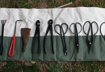 Bonsai Tree Tools & Supplies