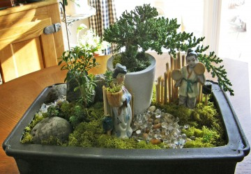 How To Make A Bonsai Dish Garden