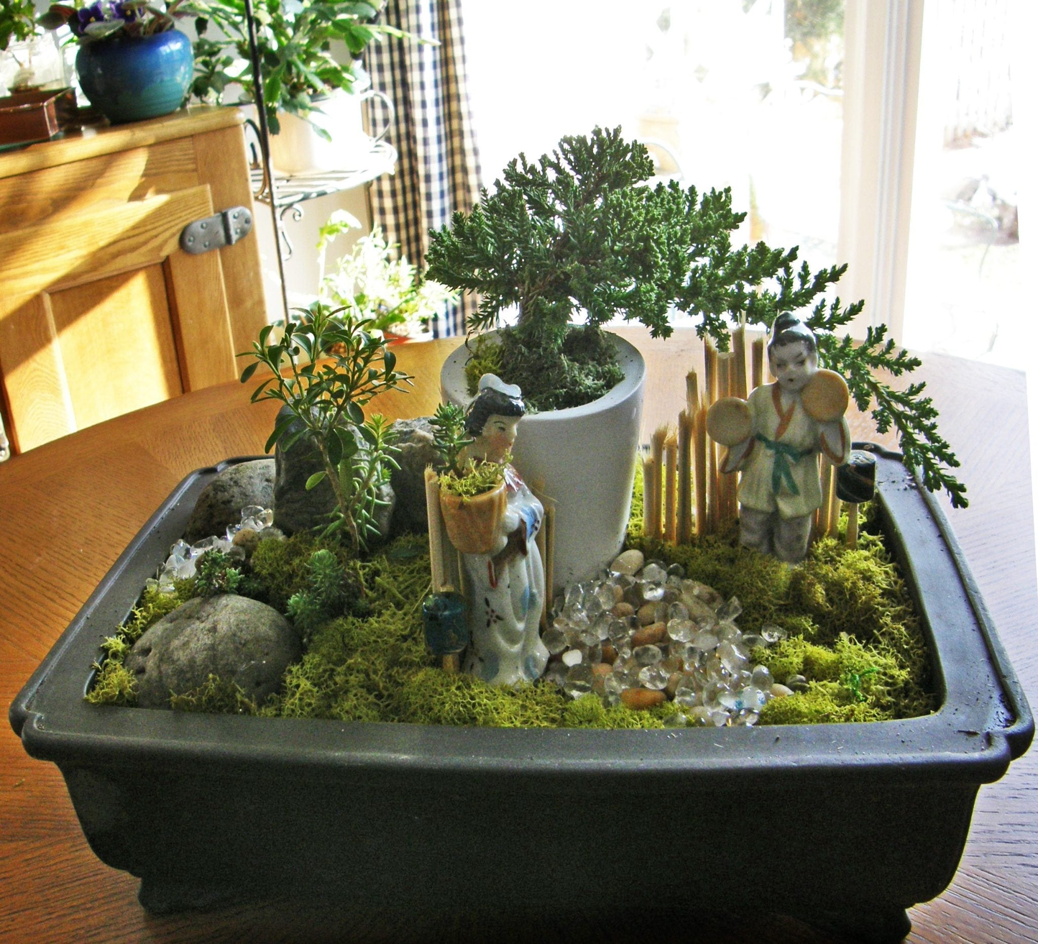 How to create a bonsai dish garden for Making a small garden