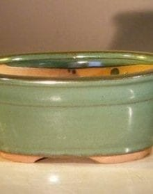 Green Ceramic Bonsai Pot - Oval 6.0 x 5.0 x 2.75