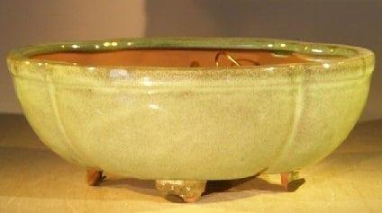 Melon Green Ceramic Bonsai Pot - Oval Professional Series 10 x 8 x 4