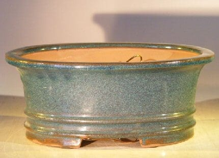 Blue/Green Ceramic Bonsai Pot - Oval Professional Series 10 x 8 x 4