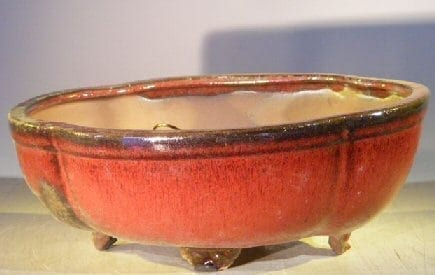 Parisian Red Ceramic Bonsai Pot #2 - Oval Professional Series 10 x 8 x 4