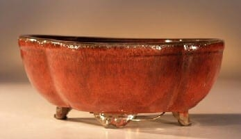 Parisian Red Ceramic Bonsai Pot Round Petal Shape 6.0 x 4.75 x 2.5