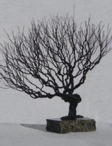 Wire Bonsai Tree Sculpture For Sale - Natural Style
