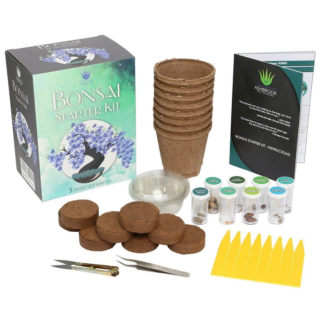 Ashbrook Outdoors Bonsai Starter Kit