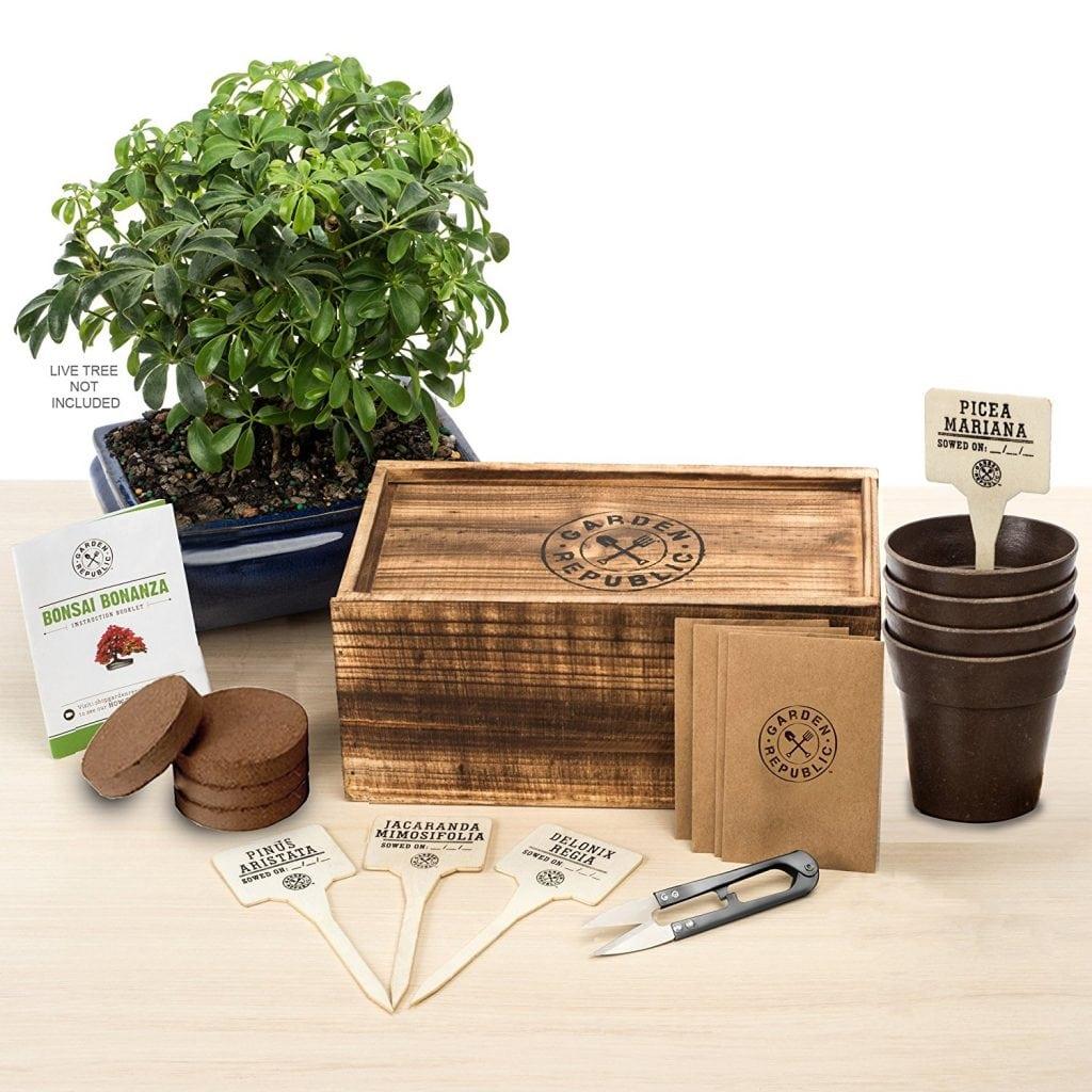 Garden Republic Bonsai Tree Seed Starter Kit