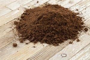 Humus peat moss bonsai soil