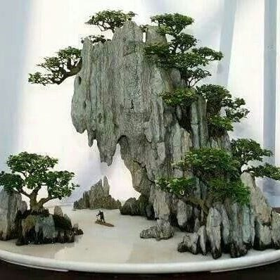 Chinese Penjing Its Influences To Japanese Bonsai Bonsai Tree Gardener
